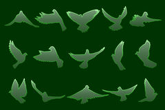 Set of flying green doves on dark green background Stock Photos
