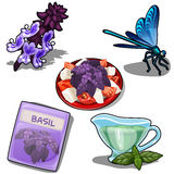 Set of food with Basil and purple dragonfly Royalty Free Stock Images