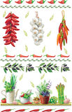 Set of Food borders. With garden herbs Royalty Free Stock Photos