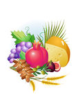 Set of food, grapes, cheese ,milk Stock Images