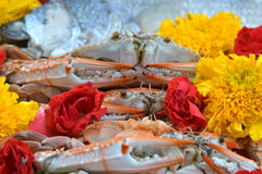 Set of food prepare for the spirits of the gods of the ceremony Royalty Free Stock Photography