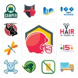 Set of football helmet, post car, gluten free, rhino, skull and crossbones, 15 years celebration, dragonfly, hair studio, icons. Set Of 13 simple  icons such as Stock Images