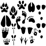 Set of footprints Royalty Free Stock Photos