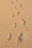 Set of Footprints in the Sand on Hawaii Beach. Two sets of footprints from a father and his daughter on a sandy beach in Oahu Hawaii Stock Image