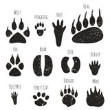 Set of forest animals footprints. vector illustration