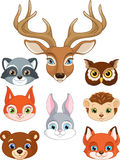 Set Forest Animals Stock Photo