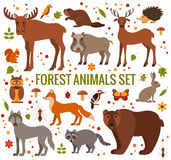 Set of forest animals Royalty Free Stock Photo