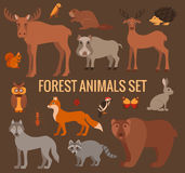 Set of forest animals Royalty Free Stock Images