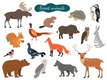 Set of forest animals on white background. vector illustration