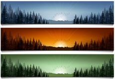 Set of forest landscape scenes banners Royalty Free Stock Photo