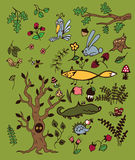 Set of a forest plants and animals on a green background. Set of a forest plants and animals. Vector set with a tree, a Fox, a wolf, herbs, berries, fungi Royalty Free Stock Image
