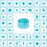 Set of forty food icons Royalty Free Stock Images