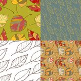 Set of four autumn leaves  backgrounds Royalty Free Stock Photo