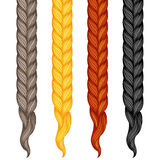 Set of four braids isolated on white. Vector illustration of hum Royalty Free Stock Images