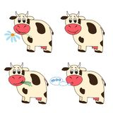 Set of four cartoon cows in different situations. A set of four cartoon cows in different situations with a flower, grass and a speech bubble Royalty Free Stock Photo