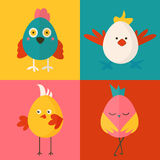 Set of four chicken characters Stock Photography