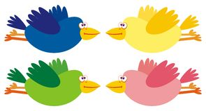 Set of four color birds. Vector illustration Royalty Free Stock Image