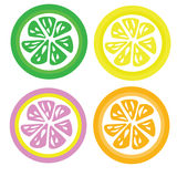 Set for four color slices lemon ,orange ,lime and pink lemon   Royalty Free Stock Photography