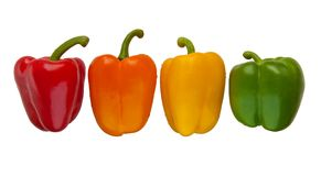 Set of four color sweet peppers Royalty Free Stock Image