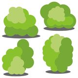 Set of four different cartoon green bushes isolated on white background Stock Image