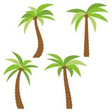 Set of four different cartoon palm trees  on white background. Royalty Free Stock Photography