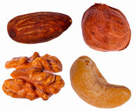 Set of four different nuts Royalty Free Stock Images