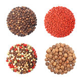 Set of four different spices round shape on white Stock Photography