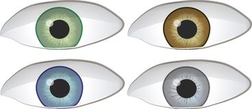 Set of Four Eyes Stock Photos