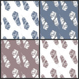 Set of four feather patterns Royalty Free Stock Photography