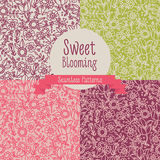 Set of four floral seamless patterns Royalty Free Stock Photography