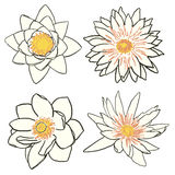 Set of four flowers, lotus and water lily Royalty Free Stock Photo