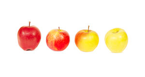 Set of four fresh apples, isolated, on white background Stock Photo