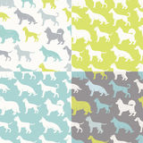 Set of four fresh stylized dog breeds seamless patterns Stock Photography
