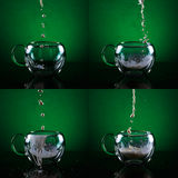 Set of four glass cups. Filling glass cups with milk sequence. Royalty Free Stock Photo