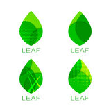 Set of four green leaf template Stock Photography