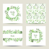Set of four herbal card templates. Royalty Free Stock Images