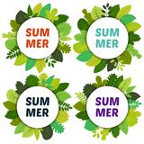 Set of four labels with green summer leaves under white rounds. And inscription summer. Vector card with green leaves isolated on white background Stock Image