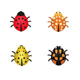 Set of four ladybugs in different colors Stock Photos