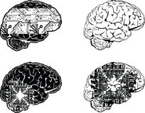 Set Of Four One Color Electronic Brain Stock Image