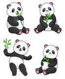 Set of four pandas with bamboo. Design element for baby shower card, scrapbook, invitation, baby goods and childish accessories. Isolated on white background Stock Image