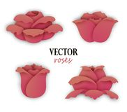 Set of four paper beige pink roses. Side view on flowers. Floral elements for design. Vector illustration isolated on white background Stock Photo