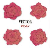 Set of four paper pink roses. Floral elements for design. Vector illustration isolated on white background Royalty Free Stock Photography