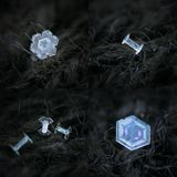 Set with four photos of real snowflakes on dark textured background. Small and simple snow crystals with rare shapes and inner structures, glittereing on dark Stock Photo