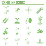 Set of four plant or leaf icons. Vector illustration Royalty Free Stock Photos