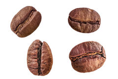 Set of four roasted arabica coffee beans close-up isolated on white background. Set of four different roasted arabica coffee beans close-up isolated on white Royalty Free Stock Photos
