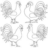 Set of four Rooster outlines Royalty Free Stock Photo