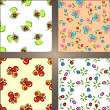 Set of four seamless backgrounds. With flowers and insects Stock Photos