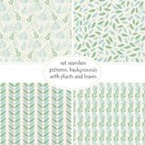 Set of four seamless backgrounds, patterns of plants, leaves and branches of leaves in pastel colors of green and blue shades . Stock Photo