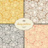 Set of four seamless daisy patterns Stock Photo