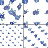 Set of four seamless patterns with blue flowers Royalty Free Stock Photography